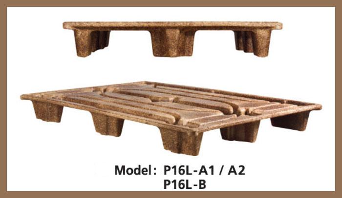 P16L-AB